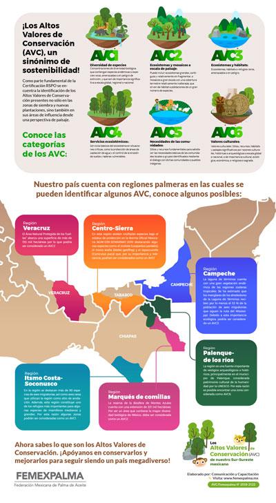 FEMEXPALMA difusión infografias Infografía-AVC-v2