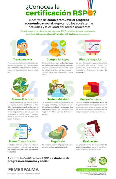 FEMEXPALMA difusión infografias Infografía-RSPO-copia