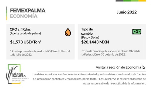 Femexpalma