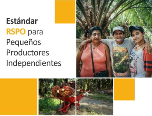 """Webinar """"Estándar RSPO para Pequeños Productores Independientes"""""""