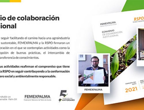 Firma del convenio de colaboración RSPO – FEMEXPALMA
